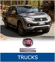 HaynesAutoGroup-Trucks-Fiat