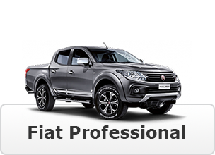 haynestrucks-image-button-fiat-professional
