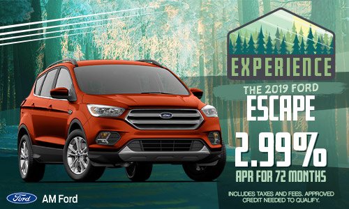 2019 Ford Escape | AM Ford | Trail, BC