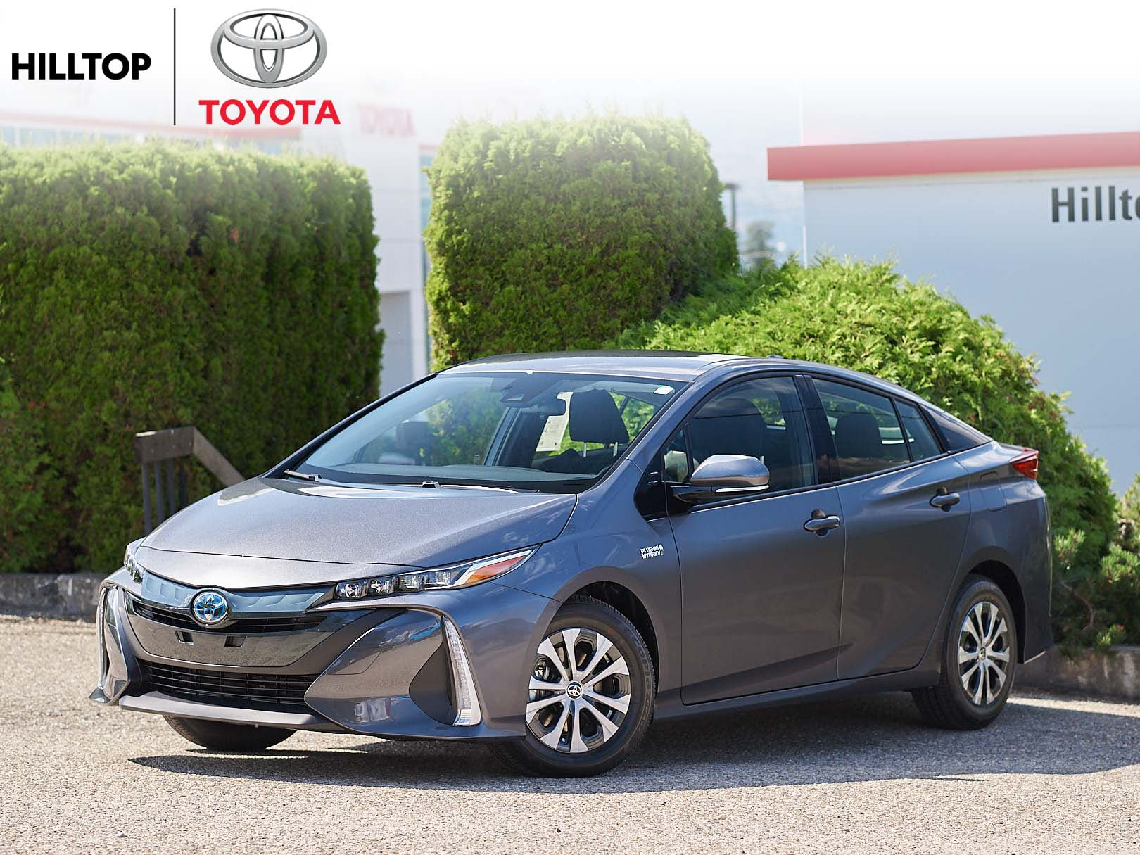 new 2021 toyota prius  stk  pp163406  hilltop toyota