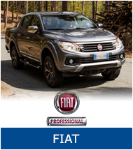 group-fiat-thumb.jpg