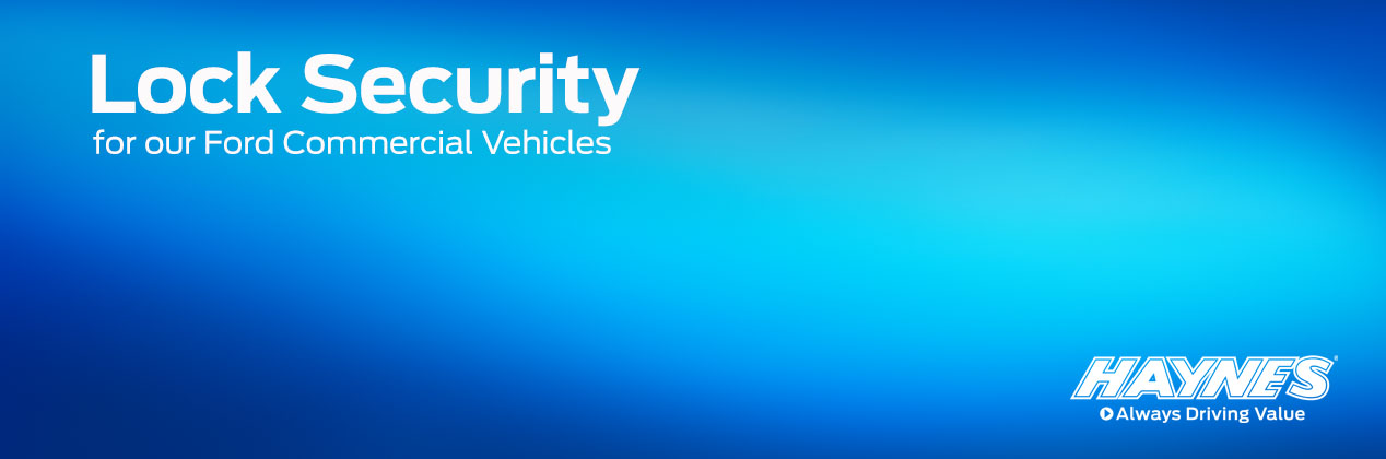 TC-LockSecurity-Header.jpg