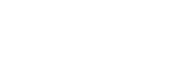 Perillo-Discount-Service-Center-logo.png
