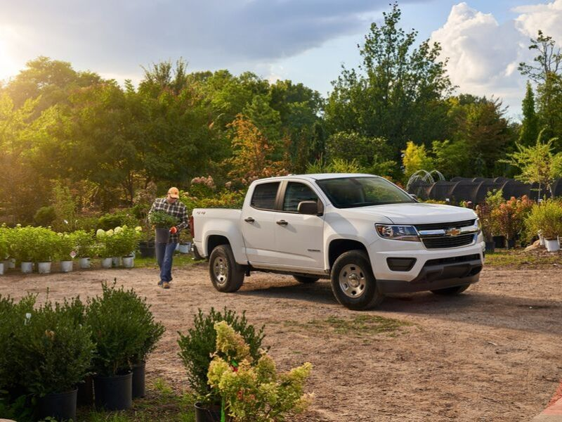 2019 Chevrolet Colorado | Victoria, TX
