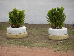 Tire Flower Pots