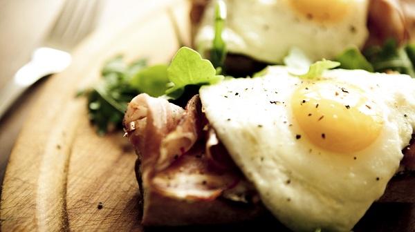 egg meal