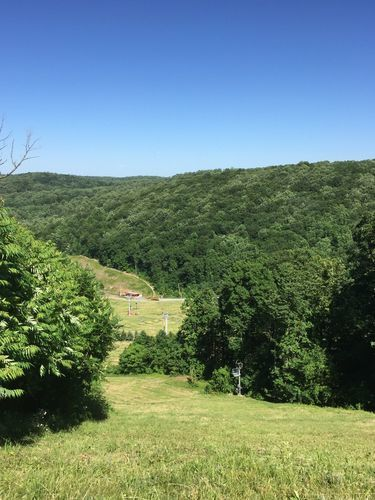 Top Local Hiking Trails