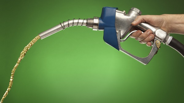 Person Holding Gasoline Pump