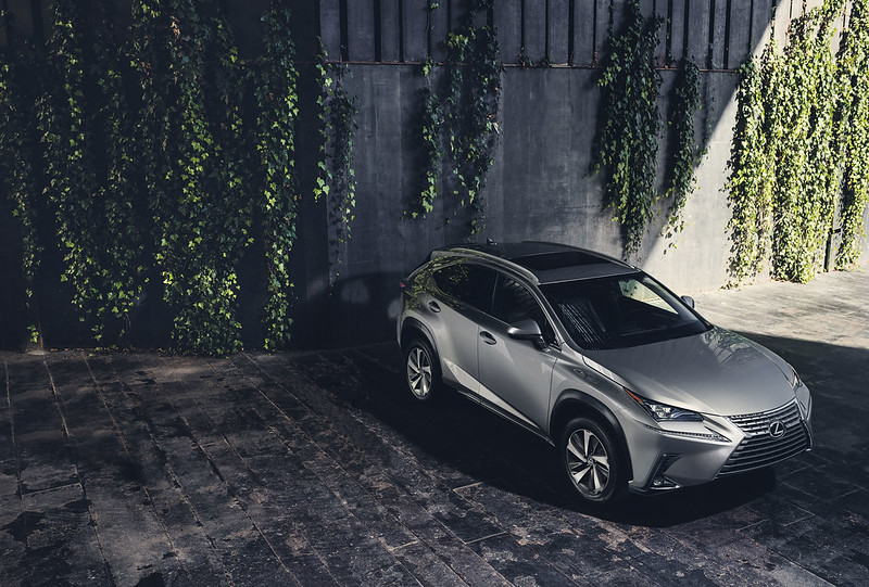 Lexus NX parked by mossy building